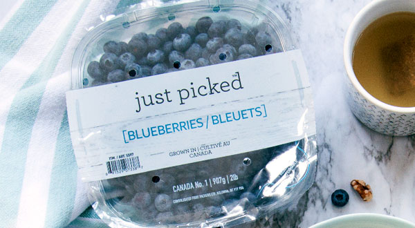 about-blueberries